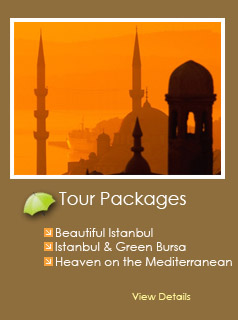 Tour Package